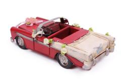 Mnk - Dekoratif Metal Araba Üstü Açık (1)