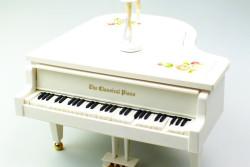 - Piyano (1)